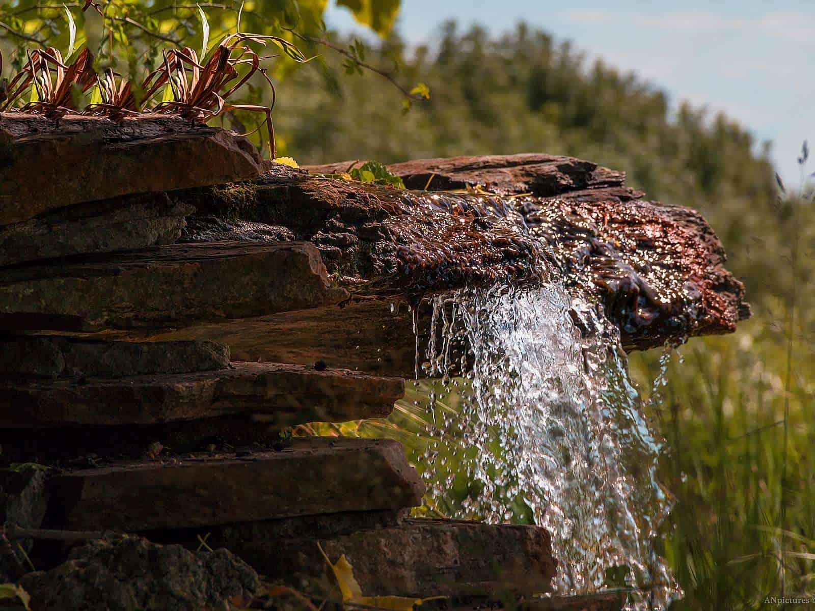 Detailaufnahme vom biotopischen Wasserfall. Unser Wahrzeichen ist auch nach 15 Jahren immer noch sehr attraktiv.