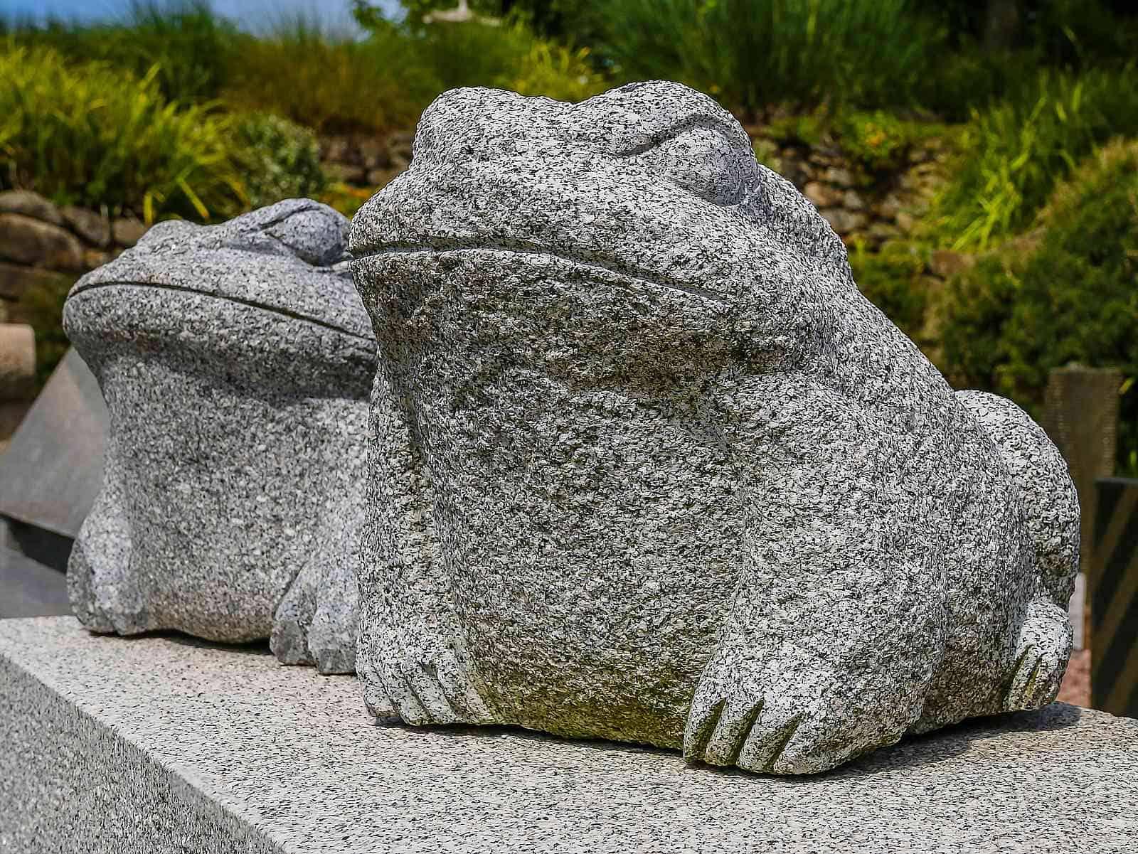 Granitfrösche auf Gartenbank